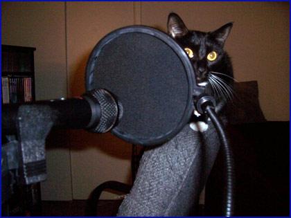 Tara wants to record a podcast